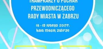 XXI Międzynarodowy Halowy Turniej Piłki Nożnej Trampkarzy w Puchar Przewodniczącego Rady Miasta Zabrze